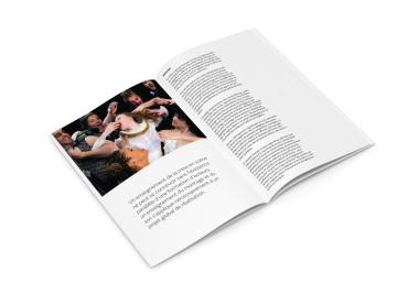 Brochure INSAS